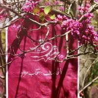 نمونه عکس برای تبلیغات بهاره محصولات خانه حجاب صدف.